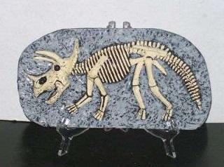 fosil dinosaurio