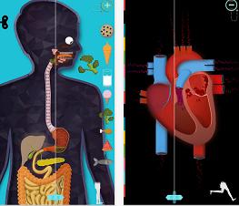 app del cuerpo humano