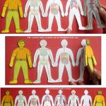 Cuepo humano atlas