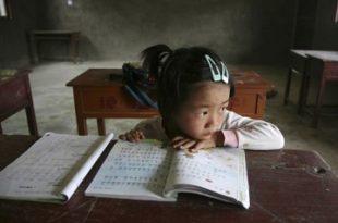 educacion sociedad